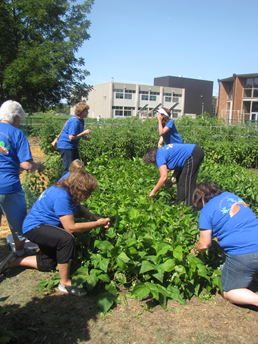Instructors tending to the garden
